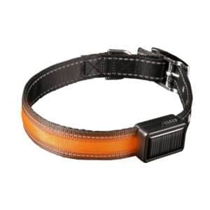 Bright Strike Lighted Collars (Sm-Lg) Dog Training & Supplies