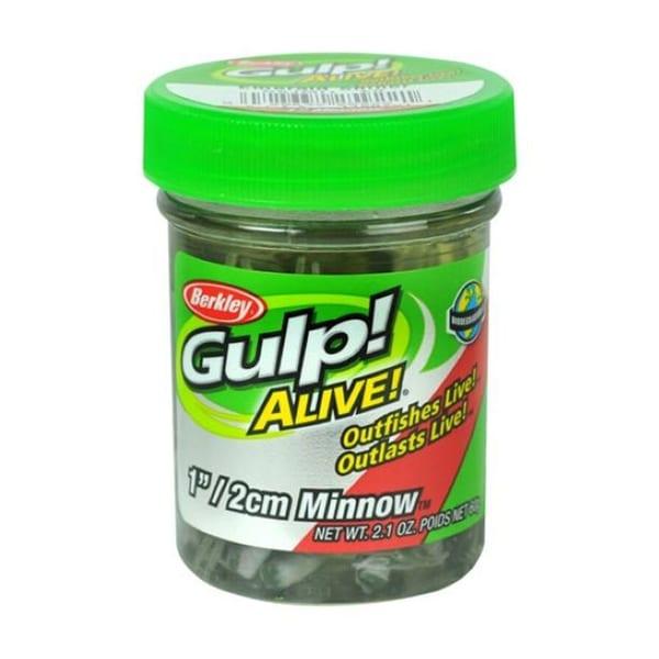 Berkley Gulp! GAJMI1-ES, 1″ Minnow  Emerald Shad Fishing